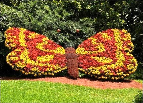 Клумба из цветов в виде бабочки дачи своими руками из фото - Ремонт и сервис