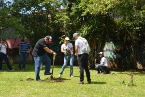 En el Día Global de la Comunidad y los días previos, los voluntarios de Citi participaron en más de 1.300 proyectos de servicio.