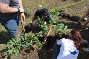 Niños, jóvenes y adultos se unieron en la siembra de árboles y limpieza.