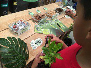 Programas de educación ambiental en centros educativos son parte de las acciones.